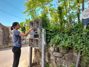 distribution cedex de boites aux lettres bord d'un chemin rural Ollioules